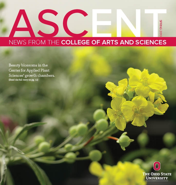 ASCENT SP13 Cover