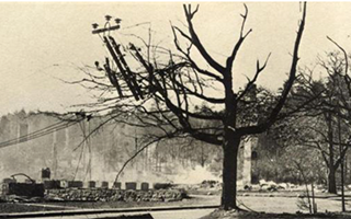 Belmont Hotel after the Fire of 1947 courtesy of the Maine Memory Network