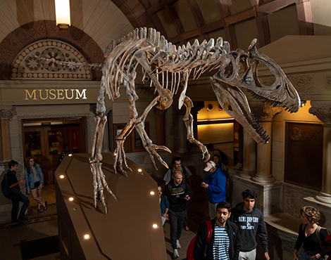 Orton Geological Museum