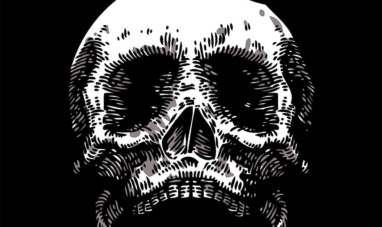 Close-up illustration of human skull