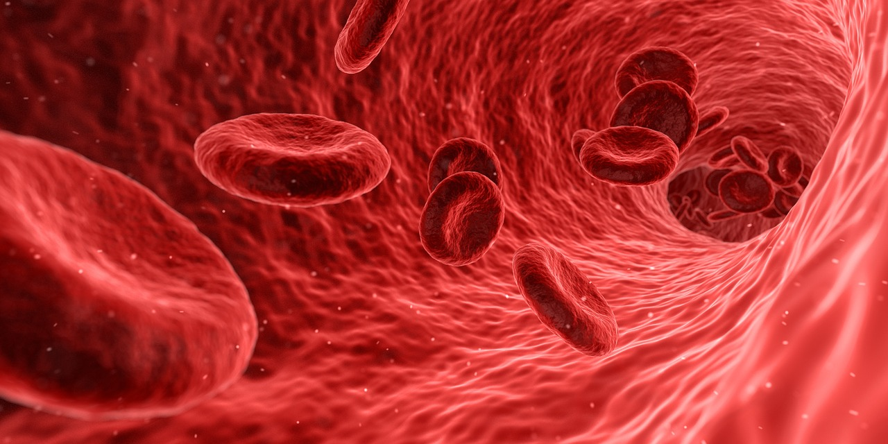 Graphic of blood cells