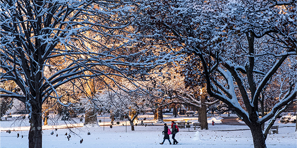Winter On The Oval