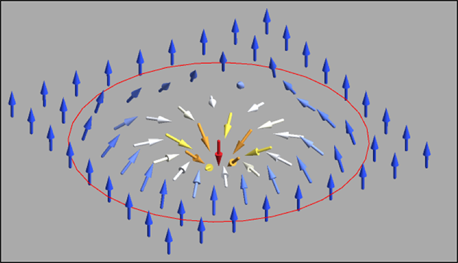 diagram of spin texture in a single skyrmion