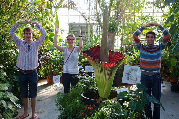 O-H-I-O in BioSci Greenhouse
