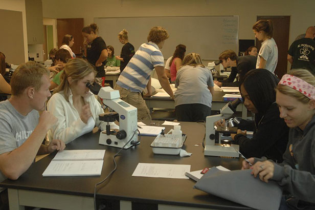 Introductory Biology students learn by doing in user-friendly laboratories with help and encouragement from award winning graduate teaching associates