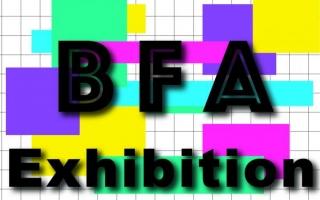BFA Exhibition art