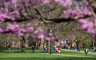 Spring on the Oval