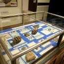 Fossilization display